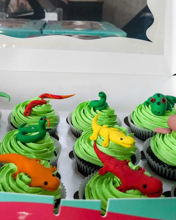 Snakes & Lizzard Cupcakes